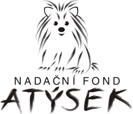 atysek-logo